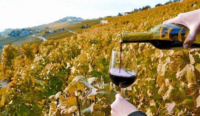 vino cataluña