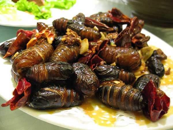 Comer Lombrices Beondegi